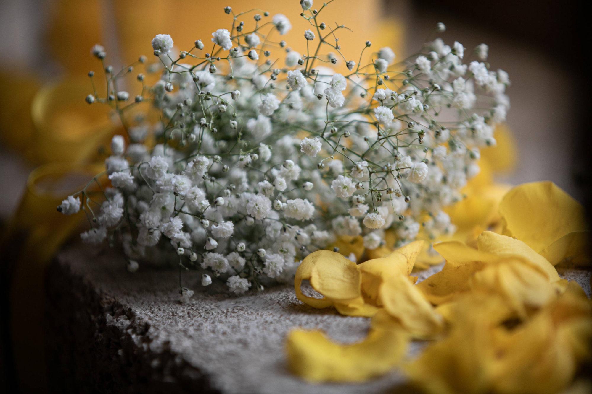 wedding_borgogna-120